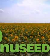 Nuseed Video Production